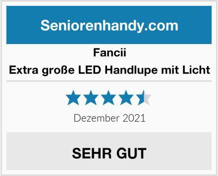 Fancii Extra große LED Handlupe mit Licht Test